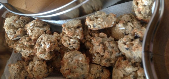 Blueberry Banana Cookies – A hit at Matthews Kennels!
